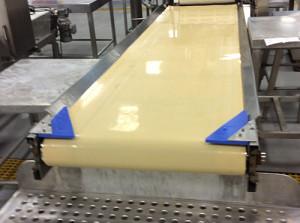 blue-uhmw-food-beverage-processing-scraper-belt-conveyor