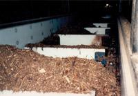 pulp-paper-uhmw-lined-conveyor-flights