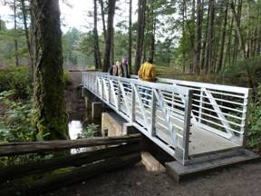 bridge-frp-grating