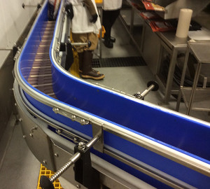 blue-uhmw-food-beverage-processing-conveyor